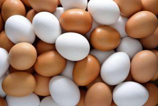 Uova di gallina - Sfondo desktop