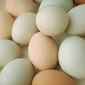 Uova – Interpretazione dei sogni -