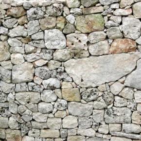 Muro – Interpretazione dei sogni -