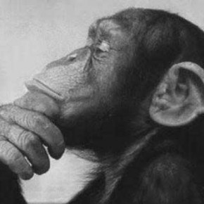 Enneatipo 5: pensatore