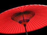 Ombrello, ombrelli - Interpretazione dei sogni