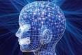 Mente umana - Psicologia
