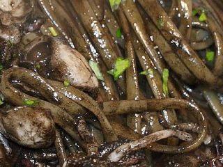 Fettuccine al nero di seppia - Ricette semplici