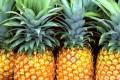 Ananas - Interpretazione dei sogni