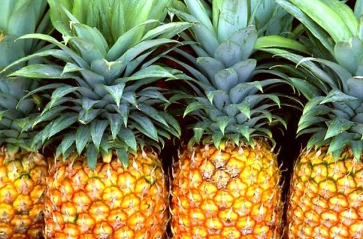Sognare ananas