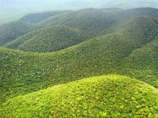 Montagne verdi di Santa Cruz