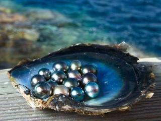 Perla-perle-01.jpg