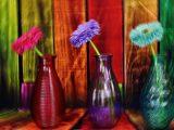 Vaso, vasi – Interpretazione dei sogni