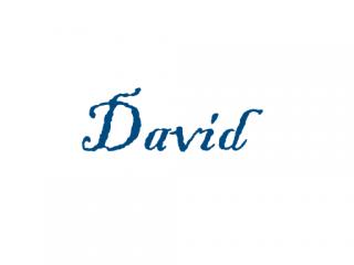 David - Significato dei nomi