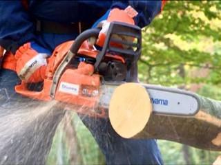Motosega che taglia tronco