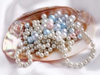 Perla, perle - 02