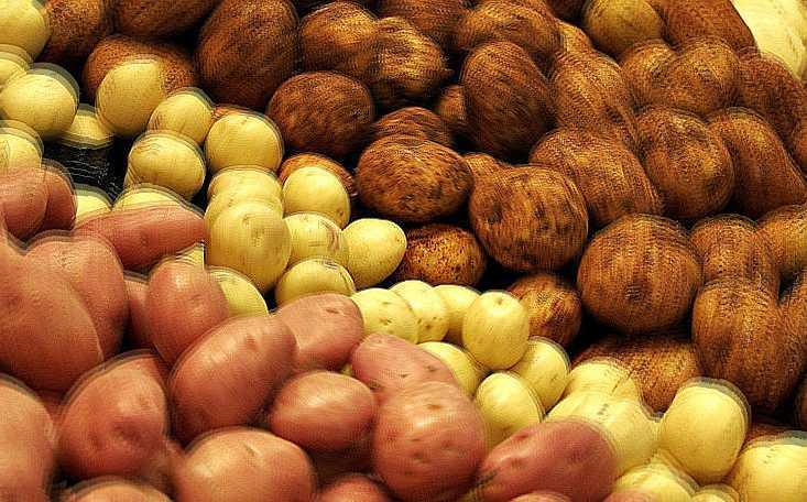 Patate Patata Interpretazione Dei Sogni Romoletto Blog