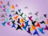 Uccelli - Interpretazione dei sogni