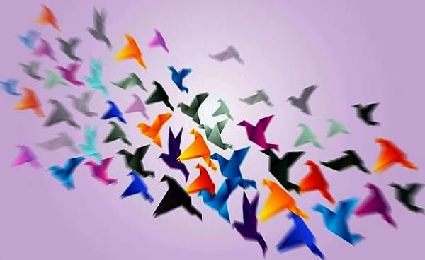 Uccelli Uccello Interpretazione Dei Sogni Romoletto Blog