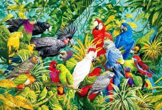 Quadro con pappagalli