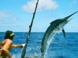 Pescare - Interpretazione dei sogni