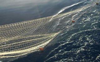 Pescare con la rete