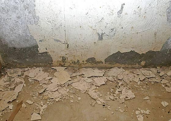 Come eliminare l 39 umidit da muri e pareti romoletto blog - Come eliminare la muffa dalle pareti interne ...