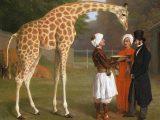 Giraffa, giraffe – Interpretazione dei sogni