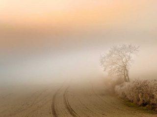 Nebbia - Interpretazione dei sogni