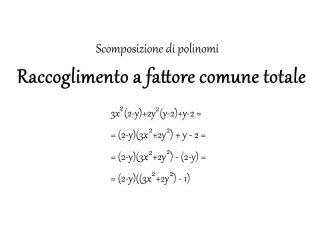 Raccoglimento a fattore comune totale - Matematica