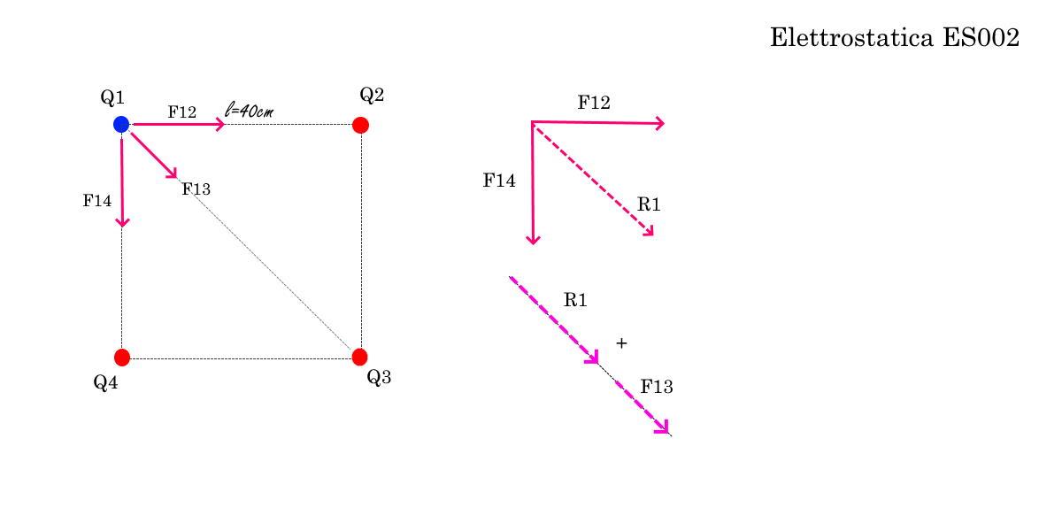 Forze agenti e R1 - Elettrostatica ES002 - Problemi di Fisica